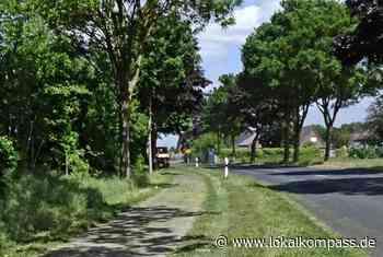 Verkehrssicherungspflicht kontra Restnatur im Grünstreifen - Bedburg-Hau - Lokalkompass.de