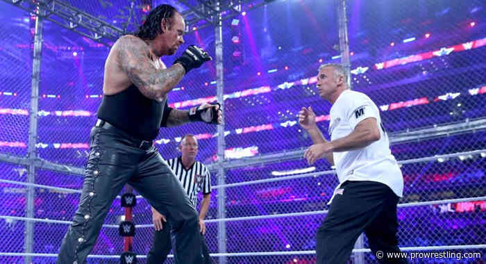Shane McMahon Recalls Wrestling The Undertaker Inside Hell In A Cell