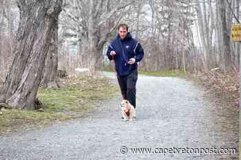 Dog walk at Petersfield Park in Westmount - Cape Breton Post