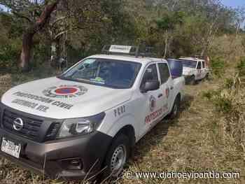En Catemaco tres personas fueron atacadas por abejas - Diario Eyipantla