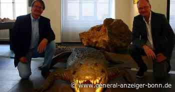 Neuer Ausstellungsbereich: Stadtmuseum Siegburg beschäftig sich mit dem Klimawandel - General-Anzeiger