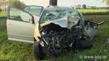 Wachtendonk (NRW): Golf-Fahrer (45) kracht auf gerader Straße gegen Baum – tot - BILD