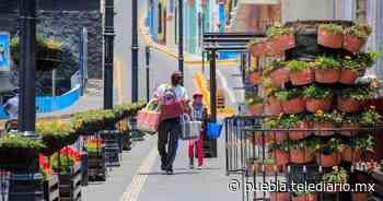 Artesano intercambia bolsas por despensa en Atlixco - Telediario Puebla