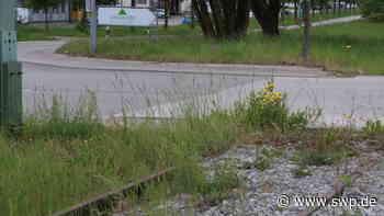 Nebenbahn Gaildorf-Untergröningen: Reaktivierung: eine Option für die Zukunft - SWP