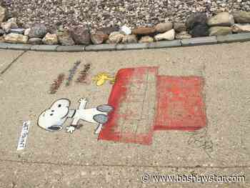 Wetaskiwin woman paints her sidewalk with vibrant artwork - Bashaw Star