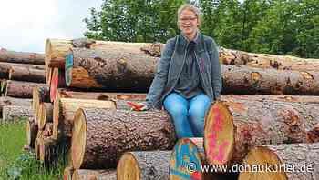 Altmannstein: Er ist wieder da - Die Altmannsteiner Försterin Astrid Schneider erklärt, wie sich Borkenkäfer durch Sturmwurfholz vermehren - donaukurier.de
