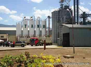 Reinauguran planta de harina de maíz precocida en Valle Guanape - Últimas Noticias