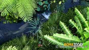 Nel Lazio riaprono i Grandi Giardini Italiani: il verde come terapia anti-stress