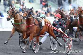 Prix Camilla (Gr.III), mardi à Vincennes (R-5). Sylvain Roger attaque en force… - Canal Turf