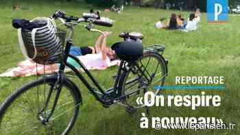 VIDÉO. Au bois de Vincennes, le retour des déjeuners sur l'herbe - Le Parisien
