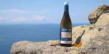 Un sorso di mare: i migliori vini delle isole minori - Icon Wheels