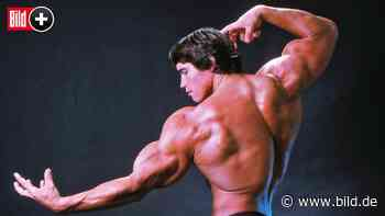 Bodybuilding-Bibel von 1986: Sind Arnies Mucki-Tipps zeitgemäß? - BILD