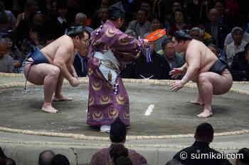 Die Geschichte des Sumo - Teil 2 - Sumikai