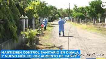 Noticias Mantienen barrido epidemiológico en Divalá y Alanje - TVN Panamá