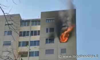 Incendio a Castel Maggiore, palazzo di 11 piani evacuato - Leggilanotizia - Leggilanotizia