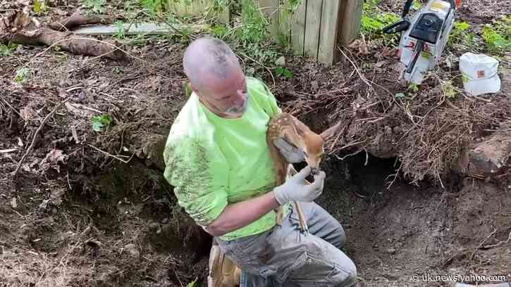 Hackettstown First Responders Rescue Trapped Fawn