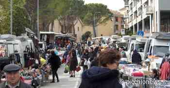 Tolentino, torna il mercato del martedì: ecco le regole da rispettare - Picchio News