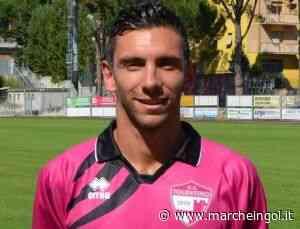 Ruggeri, fedeltà al Tolentino: Obiettivo: giocatore con più presenze - marcheingol.it