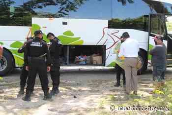 Confiscan dos maletas repletas de botellas de licor en Peto - Reporteros Hoy