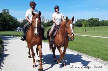 Au parc de La Courneuve, Audrey et Tom veillent aux consignes sanitaires… à cheval - Le Parisien