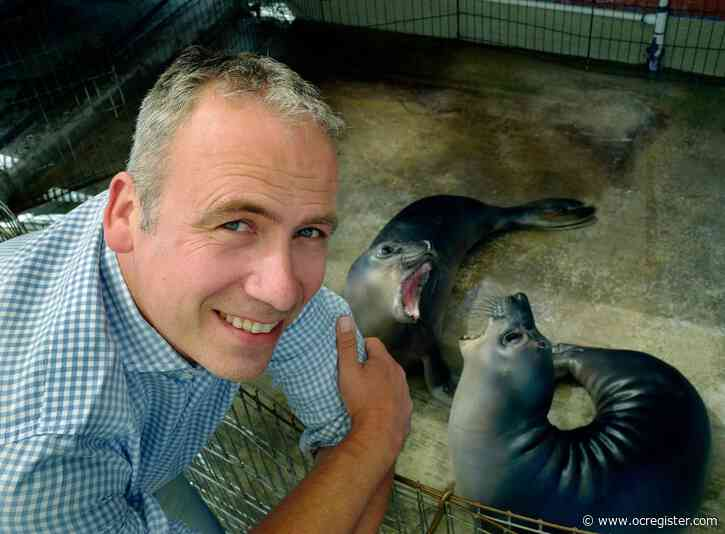 Henrik Nollens, marine mammal expert who worked with Navy and SeaWorld, joins PMMC