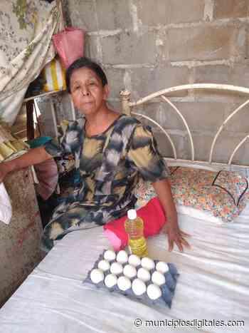 Lleva Pepe Estefan Gillessen comida a hogares de Tehuantepec - Municipios Digitales