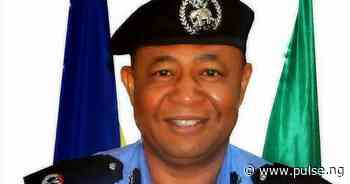 Lawan Jimeta Police deploy 300 personnel for peacekeeping in 2016 [ARTICLE] - Pulse Nigeria
