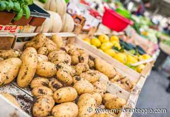 Lissone. Mercato di Piazzale degli Umiliati, lunedì 18 maggio solo con banchi alimentari - Mi-Lorenteggio