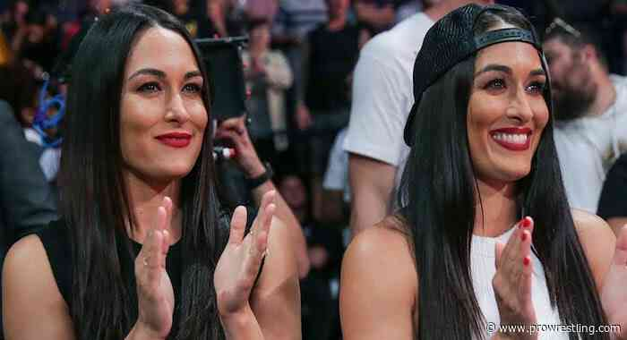 WWE Took Out Stories From The Bella Twins Memoir, John Cena Also Had Editing Rights