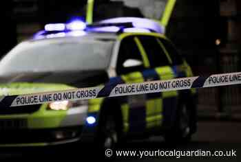 Police name man who died in South Norwood hit and run