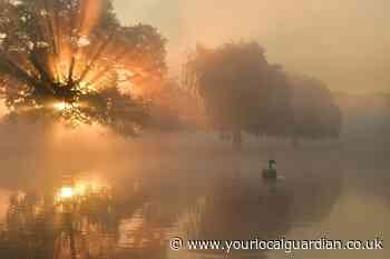 Photographer shares stunning photos of Royal Parks