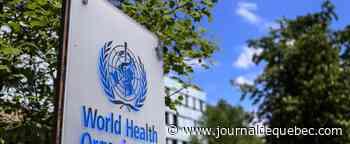 Coronavirus: face aux menaces américaines, l'OMS accepte une enquête sur son action