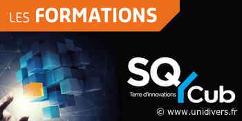 Optimiser votre démarche commerciale SQY Cub 28 mai 2020 - Unidivers