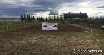 Heritage Acres Musuem plants victory garden to support Pincher Creek food bank - Global News