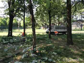 I volontari del verde al lavoro a Limbiate nei parchetti - ilSaronno