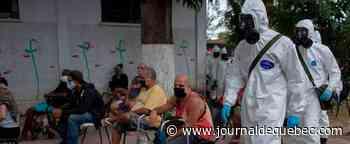 Record de plus de 1000 morts au Brésil en 24h