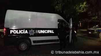 Dos lesionados tras riña en Guadalupe Victoria - Noticias en Puerto Vallarta - Tribuna de la Bahía