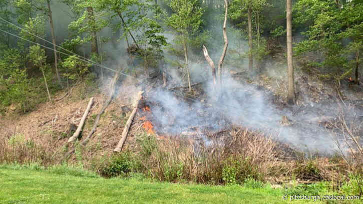 Large Brush Fire, Down Telephone Wires Restrics Traffic In Shaler Township