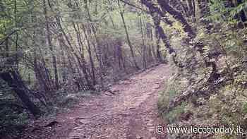 Smottamento sulla strada e sulla Cresta Osa: a Valmadrera chiudono due sentieri - LeccoToday