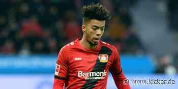 Schwere Prellung bei Benjamin Henrichs - André Ramalho von Bayer Leverkusen zu RB Salzburg zurück - kicker - kicker