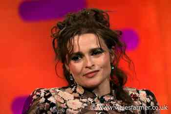 Helena Bonham Carter discusses her difficulties working with Tim Burton - Wales Farmer