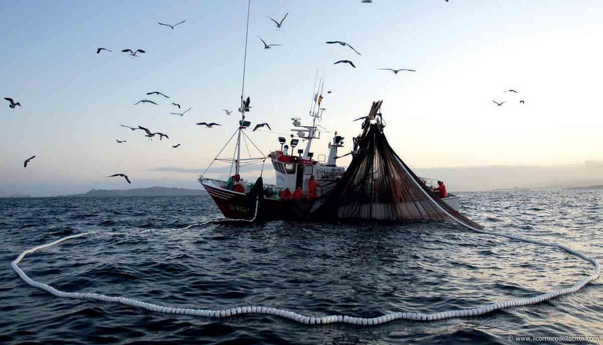 Pomezia, dal lockdown alla ripresa: il Comune incontra i pescatori di Torvaianica - Il Corriere della Città