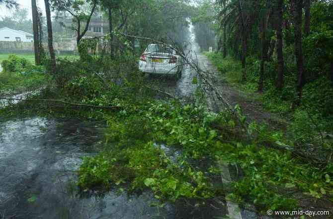 Cyclone Amphan to completely enter land by 7 pm, says IMD