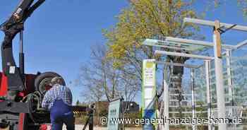 Zugang zu Bushaltestellen : Barrierefreier Ausbau kommt in Meckenheim voran - General-Anzeiger