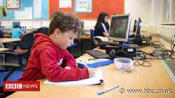 Coronavirus: Ministers under pressure over schools return date