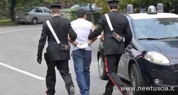 Spaccio di droga: un arresto e due denunce a Ronciglione | - NewTuscia