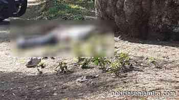 Hallan cuerpo de hombre con heridas de bala en Zumpango - Noticias en la Mira
