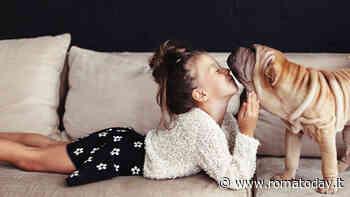 Cani e bambini: come favorire una convivenza sicura e pacifica
