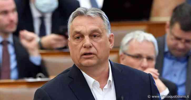 """Ungheria, vietata la registrazione del cambio di sesso nei documenti per i transgender. Amnesty: """"Si va indietro verso tempi bui"""""""