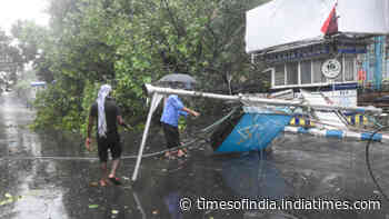 West Bengal, Odisha face wrath of Cyclone Amphan, trees, electric poles uprooted